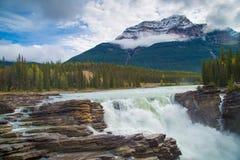 Πτώσεις Athabasca, ιάσπιδα, Καναδάς Στοκ εικόνες με δικαίωμα ελεύθερης χρήσης