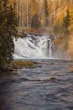 Πτώσεις Lewis - εθνικό πάρκο Yellowstone Στοκ εικόνα με δικαίωμα ελεύθερης χρήσης