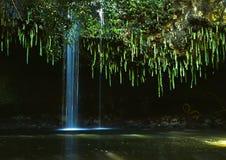 πτώσεις Maui Στοκ εικόνα με δικαίωμα ελεύθερης χρήσης