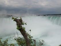 Πτώσεις Niagara, Οντάριο, Καναδάς στοκ εικόνες