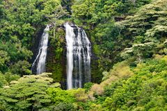 Πτώσεις Opaekaa Kauai Χαβάη στοκ φωτογραφίες