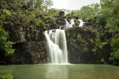 Πτώσεις Proserpine Queensland κολπίσκου κέδρων Στοκ Εικόνα