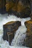 Πτώσεις Sunwapta τρεχούμενου νερού από τον ποταμό Sunwapta στην εθνική ιάσπιδα πάρκων, Αλμπέρτα, Καναδάς Στοκ Εικόνα