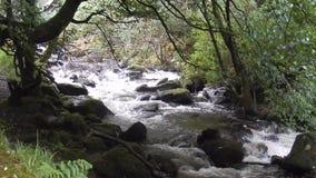 Πτώσεις Torc, εθνικό πάρκο Killarney, Ιρλανδία φιλμ μικρού μήκους