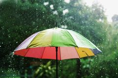 πτώση βροχής που μειώνεται επάνω στη ζωηρόχρωμη ομπρέλα και πράσινη Στοκ Φωτογραφίες