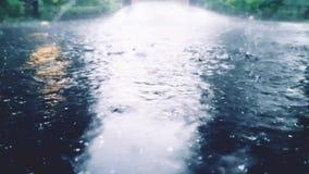 Πτώση βροχής στην οδό απόθεμα βίντεο