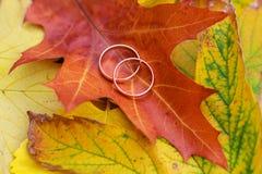 Πτώση γαμήλιων δαχτυλιδιών Στοκ φωτογραφία με δικαίωμα ελεύθερης χρήσης