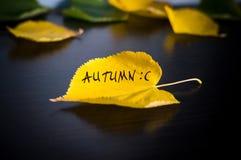πτώση επιγραφής στο κίτρινο πεσμένο φύλλο της έννοιας φθινοπώρου Στοκ φωτογραφίες με δικαίωμα ελεύθερης χρήσης