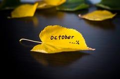 πτώση επιγραφής στο κίτρινο πεσμένο φύλλο της έννοιας φθινοπώρου Στοκ Εικόνα