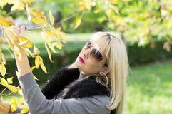 Πτώση, η γυναίκα σε έναν κλάδο με τα κίτρινα φύλλα Στοκ εικόνα με δικαίωμα ελεύθερης χρήσης
