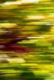 Πτώση ΙΙ Στοκ εικόνα με δικαίωμα ελεύθερης χρήσης