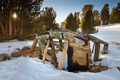 Πτώση κάτω από την παλαιά δυτική καμπίνα Στοκ εικόνες με δικαίωμα ελεύθερης χρήσης
