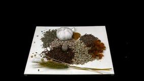 Πτώση καρυδιών spikelets φακών σιταριών σίτου σπόρων λιναριού στο μαύρο υπόβαθρο φιλμ μικρού μήκους