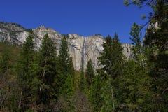 Πτώση κορδελλών στο εθνικό πάρκο Yosemite την άνοιξη Στοκ φωτογραφία με δικαίωμα ελεύθερης χρήσης