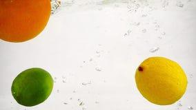 Πτώση λεμονιών, πορτοκαλιών και ασβέστη στο νερό Σε αργή κίνηση φρούτα με τις φυσαλίδες στο απομονωμένο υπόβαθρο φιλμ μικρού μήκους