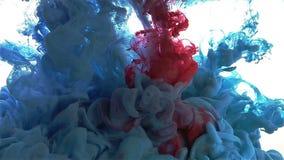 Πτώση μελανιού χρώματος Χρώμα που διαδίδεται μπλε, κόκκινο, πρασινωπό μπλε απόθεμα βίντεο
