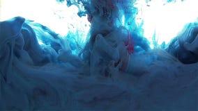 Πτώση μελανιού χρώματος Χρώμα που διαδίδεται μπλε κόκκινο φιλμ μικρού μήκους