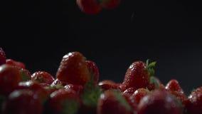 Πτώση μούρων σε ένα στρώμα της φράουλας απόθεμα βίντεο