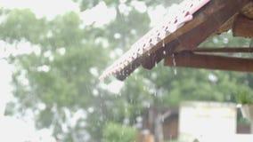 Πτώση νερού, βροχή που μειώνεται από τη στέγη, βρέχοντας υπόβαθρο απόθεμα βίντεο