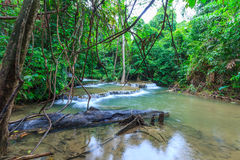 Πτώση νερού στη βαθιά δασική Ταϊλάνδη Στοκ Εικόνα