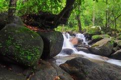 Πτώση νερού στη φύση Στοκ Εικόνες