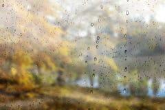 Πτώση πάρκων στην όμορφη φθινοπώρου επίδραση ημέρας τοπίων βροχερή Στοκ φωτογραφία με δικαίωμα ελεύθερης χρήσης