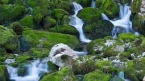 Πτώση ποταμών μεταξύ των mossy πετρών απόθεμα βίντεο