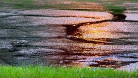 Πτώση πτώσεων βροχής στην εκλεκτική εστίαση λακκουβών απόθεμα βίντεο