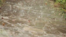 Πτώση πτώσεων βροχής στη διαδρομή, η μετακίνηση εστίασης απόθεμα βίντεο