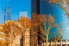Πτώση πόλεων της Νέας Υόρκης στοκ εικόνες