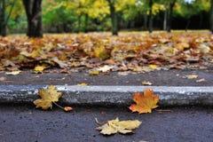 Πτώση, δρόμος, συγκράτηση Στοκ Εικόνα