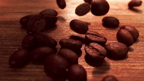 Πτώση σιταριών καφέ απόθεμα βίντεο