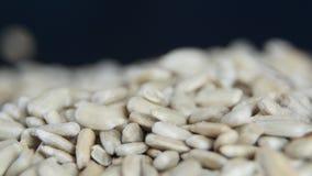 Πτώση σπόρων ηλίανθων σπόρους ξεφλουδισμένους στους σωρός ηλίανθων φιλμ μικρού μήκους