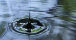 Πτώση σταγονίδιων στο νερό απόθεμα βίντεο