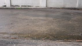 Πτώση σταγόνων βροχής Πτώσεις βροχής στο τσιμέντο πατωμάτων Άσπρο υπόβαθρο τοίχων φιλμ μικρού μήκους