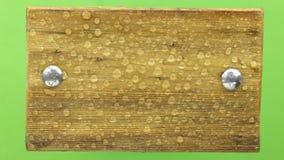 Πτώση σταγόνων βροχής σε ένα ξύλινο πλαίσιο, που απομονώνεται σε πράσινο απόθεμα βίντεο