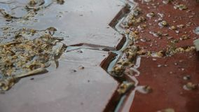 Πτώση σταγόνων βροχής στο κεραμίδι στην οδό Πυροβοληθείσα κινηματογράφηση σε πρώτο πλάνο σε σε αργή κίνηση απόθεμα βίντεο