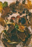 Πτώση στον πίνακα με με τα φρούτα φθινοπώρου στοκ εικόνα