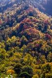 Πτώση στο μεγάλο καπνώές εθνικό πάρκο βουνών Στοκ φωτογραφίες με δικαίωμα ελεύθερης χρήσης