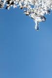 Πτώση στο παγάκι Στοκ Εικόνες