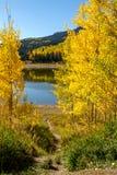 Πτώση στο Steamboat Springs Κολοράντο Στοκ Εικόνα