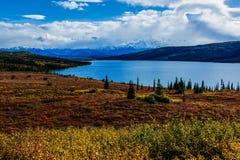 Πτώση του εθνικού πάρκου Denali Στοκ εικόνες με δικαίωμα ελεύθερης χρήσης