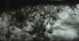 Πτώση του μαύρου μελανιού που περιέρχεται στο νερό απόθεμα βίντεο