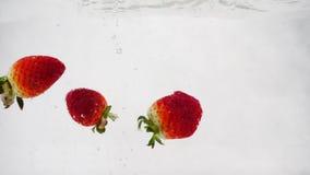 Πτώση φραουλών στο νερό με τις φυσαλίδες Βίντεο στο απομονωμένο άσπρο υπόβαθρο σε σε αργή κίνηση φιλμ μικρού μήκους
