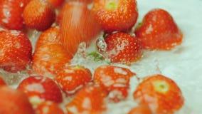 Πτώση φραουλών στο νερό απόθεμα βίντεο