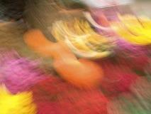 πτώση χρωμάτων Στοκ Εικόνα