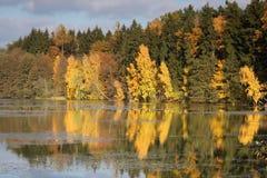 πτώση χρώματος Στοκ φωτογραφία με δικαίωμα ελεύθερης χρήσης
