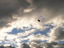 πτώση Στοκ φωτογραφία με δικαίωμα ελεύθερης χρήσης