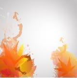 Πτώση leafes με τον παφλασμό χρώματος θερμό Στοκ Φωτογραφία
