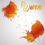 Πτώση leafes με το θερμό χρώμα παφλασμών χρώματος Στοκ Φωτογραφίες